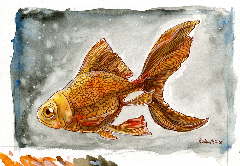 Goldfisch_colo