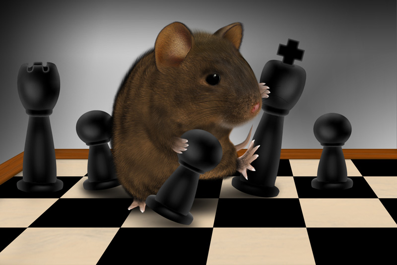 Schachmaus-verliert