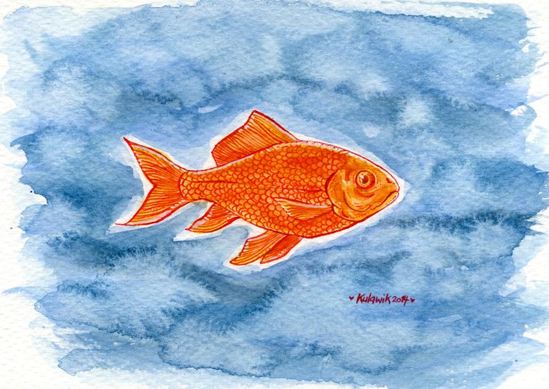 Goldfisch_knallig