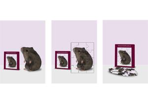 Hamster im Puzzle